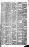 Herts & Cambs Reporter & Royston Crow Friday 08 November 1878 Page 7