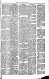 Herts & Cambs Reporter & Royston Crow Friday 15 November 1878 Page 3