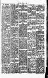 Eastern Evening News Monday 09 January 1882 Page 3