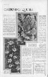 Britannia and Eve Friday 30 November 1928 Page 55