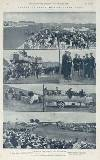 Illustrated Sporting and Dramatic News Saturday 23 May 1914 Page 28