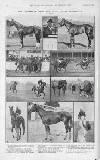Illustrated Sporting and Dramatic News Saturday 22 October 1921 Page 18