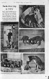 Illustrated Sporting and Dramatic News Friday 20 January 1939 Page 27