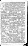 Leinster Leader Saturday 16 February 1884 Page 7