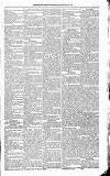 Kildare Observer and Eastern Counties Advertiser Saturday 26 February 1881 Page 3