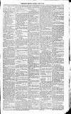 Kildare Observer and Eastern Counties Advertiser Saturday 19 March 1881 Page 3