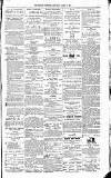 Kildare Observer and Eastern Counties Advertiser Saturday 19 March 1881 Page 7