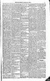 Kildare Observer and Eastern Counties Advertiser Saturday 02 July 1881 Page 5