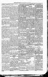 Kildare Observer and Eastern Counties Advertiser Saturday 08 February 1890 Page 5
