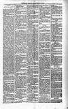 Kildare Observer and Eastern Counties Advertiser Saturday 21 March 1891 Page 3