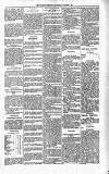 Kildare Observer and Eastern Counties Advertiser Saturday 21 March 1891 Page 5