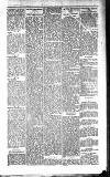 Kildare Observer and Eastern Counties Advertiser Saturday 01 January 1910 Page 5