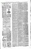 Wicklow News-Letter and County Advertiser Saturday 01 April 1899 Page 7