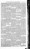 Wicklow News-Letter and County Advertiser Saturday 22 January 1916 Page 7