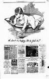 Montgomeryshire Echo Saturday 14 February 1891 Page 7