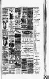 Montgomeryshire Echo Saturday 06 January 1894 Page 3