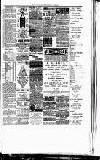 Montgomeryshire Echo Saturday 03 February 1894 Page 3