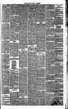Eastbourne Gazette Wednesday 26 December 1866 Page 3