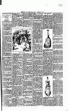 Rugby Advertiser Wednesday 18 February 1891 Page 3
