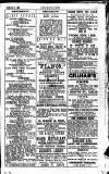 Irish Society (Dublin) Saturday 02 February 1889 Page 23