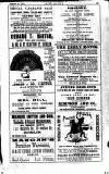 Irish Society (Dublin) Saturday 23 February 1889 Page 3