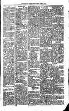 Todmorden & District News Friday 24 March 1871 Page 3