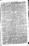 Todmorden & District News Friday 05 September 1873 Page 3