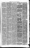 Todmorden & District News Friday 31 July 1874 Page 7