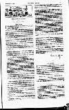 The Social Review (Dublin, Ireland : 1893) Saturday 11 November 1893 Page 11