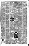 Yarmouth Independent Saturday 01 March 1862 Page 3