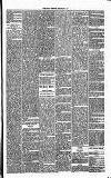 Annandale Observer and Advertiser Friday 07 February 1873 Page 3