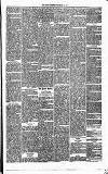 Annandale Observer and Advertiser Friday 14 February 1873 Page 3