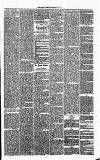 Annandale Observer and Advertiser Friday 21 February 1873 Page 3