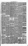 Annandale Observer and Advertiser Friday 28 February 1873 Page 3