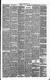 Annandale Observer and Advertiser Friday 07 March 1873 Page 3