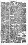 Annandale Observer and Advertiser Friday 16 May 1873 Page 3