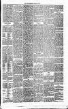 Annandale Observer and Advertiser Friday 22 August 1873 Page 3