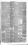 Annandale Observer and Advertiser Friday 29 August 1873 Page 3