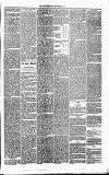 Annandale Observer and Advertiser Friday 12 September 1873 Page 3