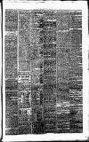 Annandale Observer and Advertiser Friday 31 October 1873 Page 3