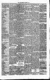 Annandale Observer and Advertiser Friday 07 November 1873 Page 3