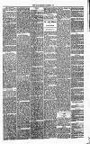 Annandale Observer and Advertiser Friday 12 December 1873 Page 3