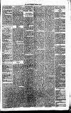 Annandale Observer and Advertiser Friday 26 December 1873 Page 3