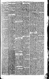 Wigan Observer and District Advertiser Saturday 17 July 1880 Page 3