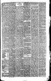 Wigan Observer and District Advertiser Saturday 17 July 1880 Page 5