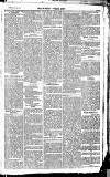 Newbury Weekly News and General Advertiser Thursday 07 January 1869 Page 3
