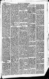 Newbury Weekly News and General Advertiser Thursday 18 March 1869 Page 3