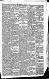 Newbury Weekly News and General Advertiser Thursday 18 March 1869 Page 5