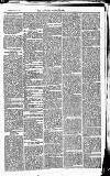 Newbury Weekly News and General Advertiser Thursday 27 May 1869 Page 3