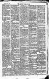 Newbury Weekly News and General Advertiser Thursday 27 May 1869 Page 7